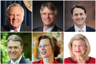Top (from left): Nathan Deal, Andrew Hunt, Jason Carter; Bottom (from left): David Perdue, Michelle Nunn, Amanda Swafford; Photos from campaign websites, except Deal (official portrait) and Perdue (PalmettoCrescent/Wikipedia)
